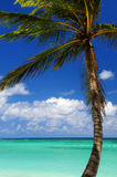 Scenic view on Caribbean sea Stock Photos