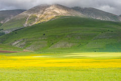 Scenic view of Castelluccio di Norcia Valley, Umbria - Italy Royalty Free Stock Images