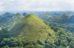 Scenic view of Chocolate Hills on Bohol Island. Philippines Stock Image