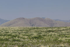 Scenic view from City of Rocks state park,New Mexico. Stock Photography