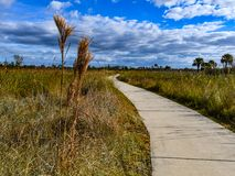 Cloudscape at the End of the Concrete Pathway. A scenic view of a cloudy sky in the background of a winding concrete trail in Pine Glades, Palm Beach County stock image