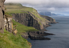 Scenic view of coast of Mykines Stock Photo