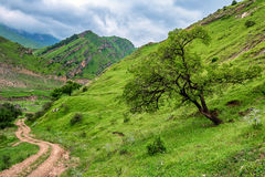 Scenic view of Dagestan Stock Photos