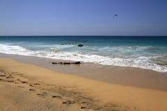 Scenic view El Cotillo beach on Fuerteventura Stock Images