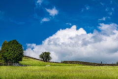 Scenic view on English countryside. Sky and clouds over an English countryside on springtime in Forest of Bowland, Lancashire, England UK Stock Image
