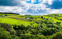 Scenic view on English countryside Stock Images
