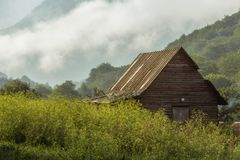 Hut in the foggy forest Stock Photo