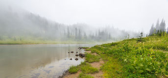Scenic view of the forest,meadow and lake with fog on the day in Stock Photos