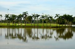 Lake, sand traps, palm trees & golf Royalty Free Stock Photo