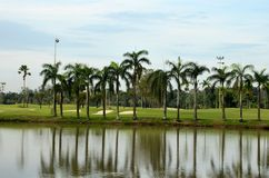 Lake, sand traps, palm trees & golf Stock Photos