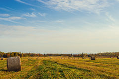 Scenic view of hay stacks at fall Royalty Free Stock Photo