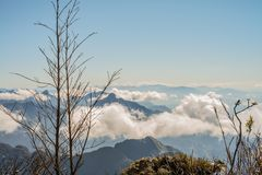 A scenic view of Heaven on earth, Fansipan highest mountain,Sapa,Vietnam. A scenic view of Heaven on earth, Fansipan highest mountain summit of Indochina in sapa royalty free stock image
