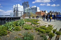 Scenic View the High Line Stock Image