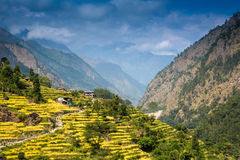 Scenic view of the Himalaya mountains Royalty Free Stock Image