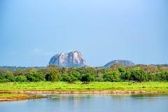 Landscape Yala National Park, Sri Lanka Royalty Free Stock Photo