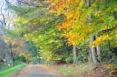 Scenic view of Kelvingrove Park - Glasgow, Scotland Stock Image