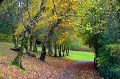 Scenic view of Kelvingrove Park - Glasgow, Scotland Royalty Free Stock Image
