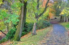 Scenic view of Kelvingrove Park - Glasgow, Scotland Royalty Free Stock Photo