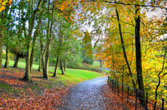 Scenic view of Kelvingrove Park - Glasgow, Scotland Royalty Free Stock Images