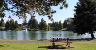 Scenic view of a lake. Beautiful view of houses near a lake royalty free stock photography