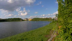 A scenic view of the Lake in Park. A scenic view of the Lake in the Pak stock video