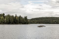 Scenic view of lake and pine tree islands with birds on them in Algonquin provincial national park Ontario Canada. Scenic view of a lake and pine tree islands Royalty Free Stock Photography