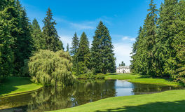 Scenic view of lawn and trees with reflection in the lagoon in botanical garden.. Royalty Free Stock Image