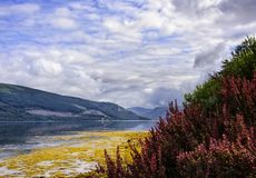 Loch Fyne in Scotland Royalty Free Stock Photos
