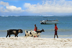 Scenic view of Masai Beach Boys on a kenyan beach Stock Photo