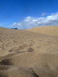 Scenic View Of Maspalomas Dunes Stock Photos