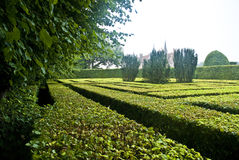 Scenic view of maze. In grounds of Egeskov Castle, Funen island, Denmark Royalty Free Stock Images