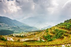 Scenic view of mirror rice terraces filled with water. Vietnam stock images