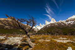 Scenic view of Mount Fitz Roy. Patagonia. Royalty Free Stock Photo