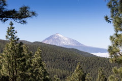 Scenic view of mount Teide Stock Image