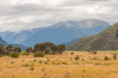 A scenic view of the Mountain in New Zealand / Landscape Royalty Free Stock Photos