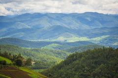 Scenic view of mountain range in Pa Pong Pieng. Chiang Mai ,Thailand. Royalty Free Stock Photography