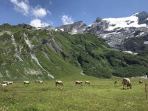 Scenic view of mountain Titlis stock photos