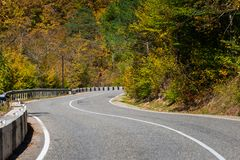 Scenic view of a new road. Through autumn trees stock photos