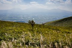 Scenic view from the north rim of Aso volcanic caldera. With the 5 peaks of Aso at the background - Aso-Kuju National Park, Kumamoto prefecture, Japan royalty free stock photo
