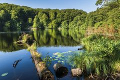 Free Scenic View Of The Herthasee At Jasmund National Park. Royalty Free Stock Images - 155337879
