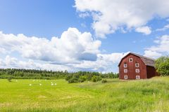 Scenic View of an Old Barn with White Silage. Balls with a Blue Sky Stock Photo