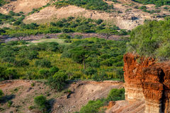 Scenic view of Olduvai Gorge Royalty Free Stock Photo