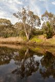 Scenic view of Onkaparinga River at Old Noarlunga, South Austral. Ia royalty free stock images
