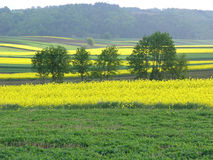 Scenic view over typical Poland landscape Royalty Free Stock Photo