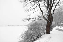 Scenic view of path around lake Stock Photos