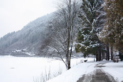 Scenic view of path around lake, Zeller See, Zell Royalty Free Stock Photography