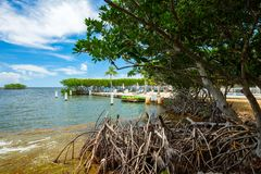 Scenic Florida Keys. Scenic view of the popular Florida Keys along the bayside with mangrove trees and lounge chairs stock image