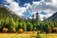 Scenic view of primeval forest among snow-capped mountains Stock Photography