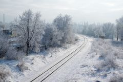 Scenic view of railway along snowy trees. Scenic view of railway going along snowy trees royalty free stock photography
