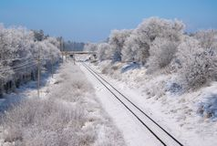 Scenic view of railway along snowy trees. Scenic view of railway going along snowy trees royalty free stock photos